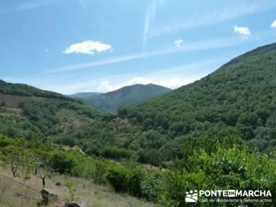 Parque Nacional Monfragüe - Reserva Natural Garganta de los Infiernos-Jerte;viajes de un dia desde